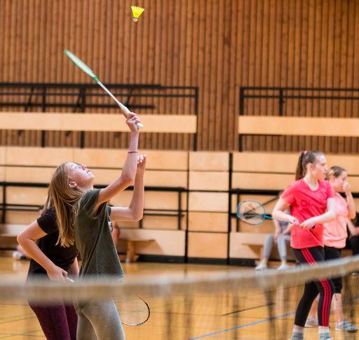 igs zetel badminton